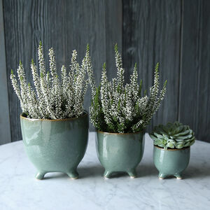 Sage Green Raised Pot Collection