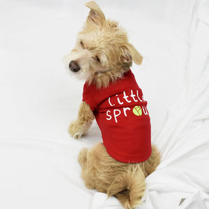 'Little Sprout' Christmas Pet Vest - pets christmas clothing