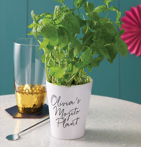 Personalised Grow Your Own Mojito Kit - housewarming gifts