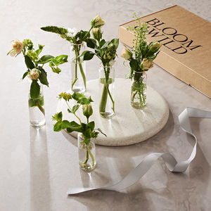 Posy Party Letterbox Flowers - artisan edit