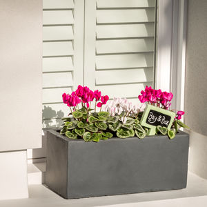 Small Window Box Planter In Hampstead Lead - pots & planters
