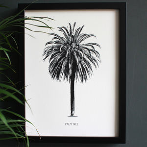 Encyclopaedic Inspired Fine Art Print, Palm Tree - drawings & illustrations