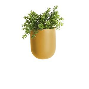Coloured Ceramic Tall Oval Hanging Planter