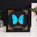 Personalised Blue Morpho Butterfly Wall Art Frame