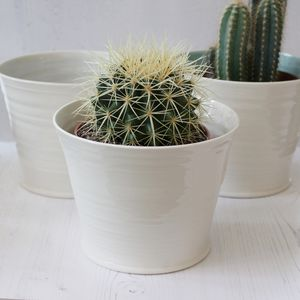Hand Thrown Porcelain Plant Pot Collection