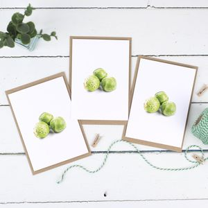 Sprouts Christmas Card Pack