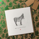 Christmas Donkey Christmas Card Pack Of Eight Cards