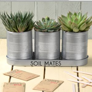 Personalised Silver Planters With Seeds And Markers - pots & planters