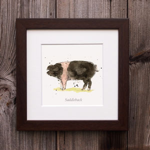 Limited Edition Pig Print. British Saddleback