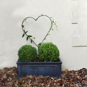 Giant Heart Topiary Frame