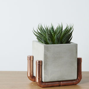 Industrial Planter Pot With Copper Holder