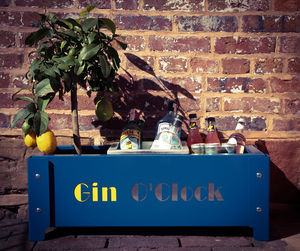 Gin O'clock Garden Party Planter - gardener