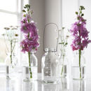Mini Hanging Glass Bottle Vase