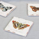 Set Of Four Botanical Butterfly Coasters