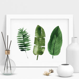 Palm Leaf Botanical Print Watercolour Illustration - summer sale