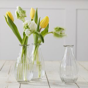 Set Of Three Contemporary Tulip Vases