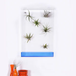 Airbox Neon Blue Glass Effect Plant Display - pots & planters