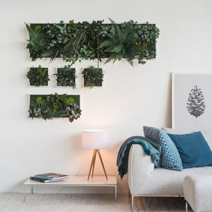 Plant Island Wall Frame Three Pack - the greenhouse edit