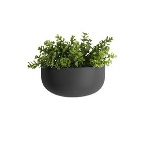 Coloured Ceramic Wide Oval Wall Planter