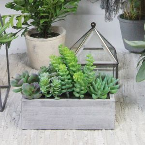 Artificial Succulent Trough - home accessories