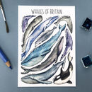 Whales Of Britain Illustrated Postcard