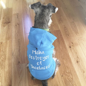 Personalised Pet Hoodie - wearing