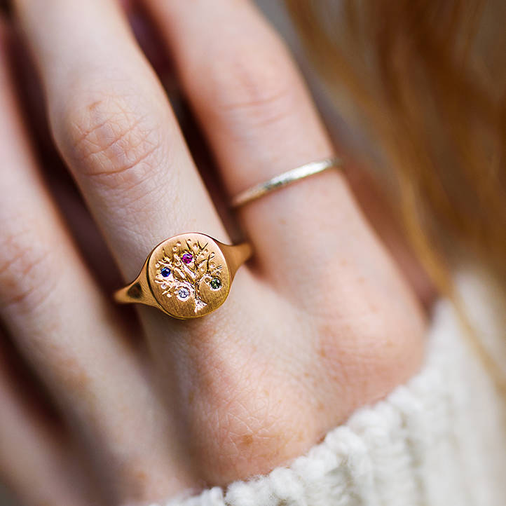 Family Tree Signet Ring With Birthstones by Jana Reinhardt Jewellery