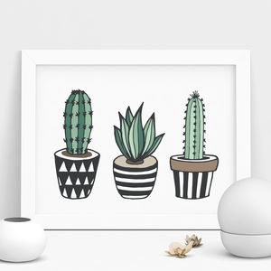 Cactus Print Illustrated Set In Green