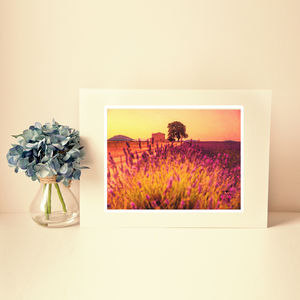 Provence Summer Fine Art Photography Print - nature & landscape