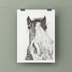 Horse Portrait Art Print In Graphite Pencil