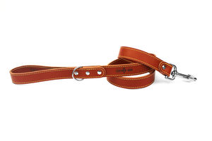 Leather Dog Lead - dog leads & harnesses