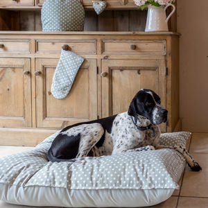 Organic Cotton Sage Polka Dot Pet Bed - more