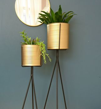 Brass Planter On Black Metal Stand