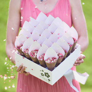 25 Biodegradable Wedding Petal Confetti Cones - confetti & petals