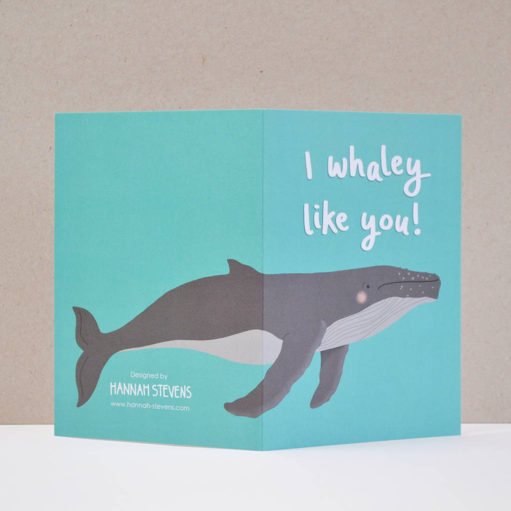 Whale Puns – Daily Motivational Quotes