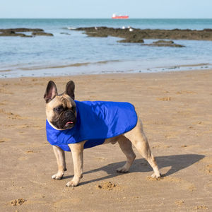 Dog Pacamac Rain Coat With Optional Harness Hole - pet clothes & accessories