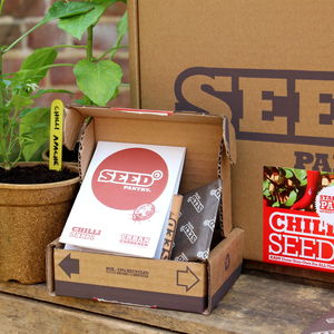 Chilli Seeds Starter Pack