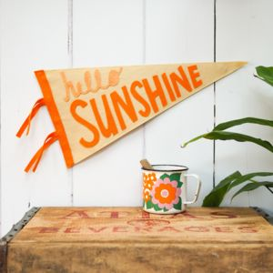 'Hello Sunshine' Pennant Flag