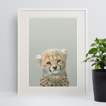 Nursery Ideas Cheetah Cub Animal Print