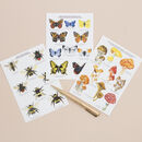 British Nature Postcards Set Of 10