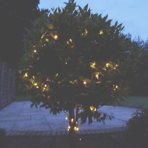 Warm White Solar Powered Fairy Lights - garden sale