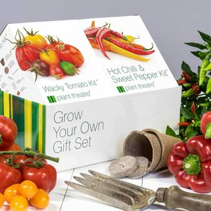 Wacky Tomato And Hot Chilli And Sweet Pepper Kits - gardening