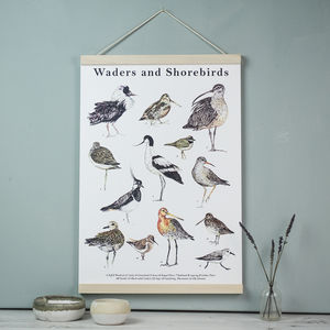 Wader And Shorebirds Watercolour A3 Art Print