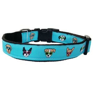 Dog Collar Dogs In Sunglasses