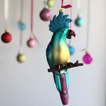 Blue Parrot Christmas Decoration