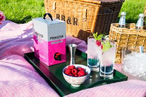 Three Litre Box Of Raspberry Infused Gin