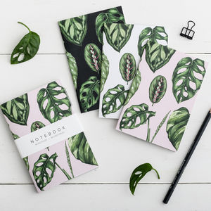 Pack Of Three Houseplants Notebooks - view all new