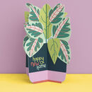 3D Fold Out 'Happy New Home' Plant Card