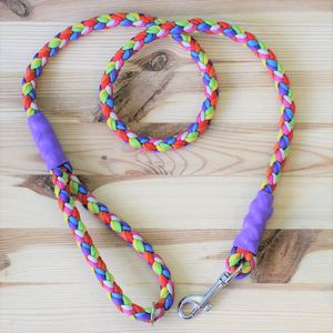 Rainbow Mega Rope Style Paracord Dog Lead - dogs
