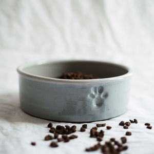 Handmade Pottery Dog Bowl